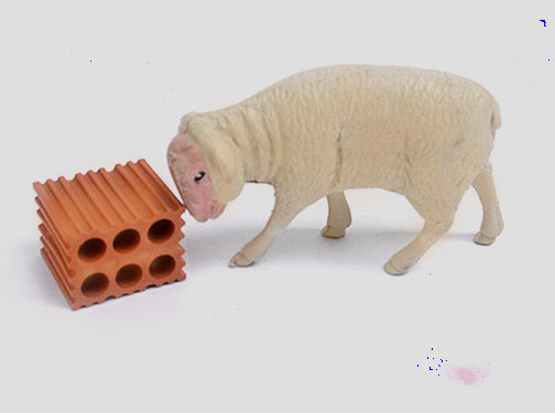 ovelha123